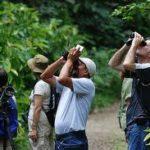 birdwatching_000